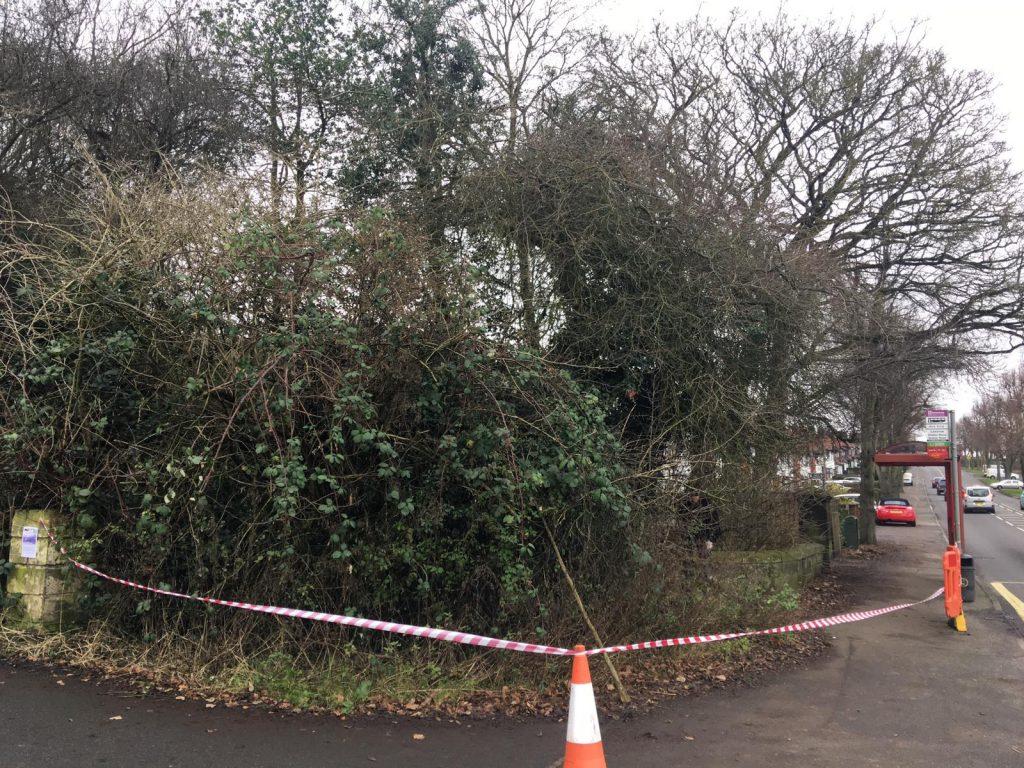 Shipley Wood Entrance Restoration - SEAG - Shipley Eco-Action Group
