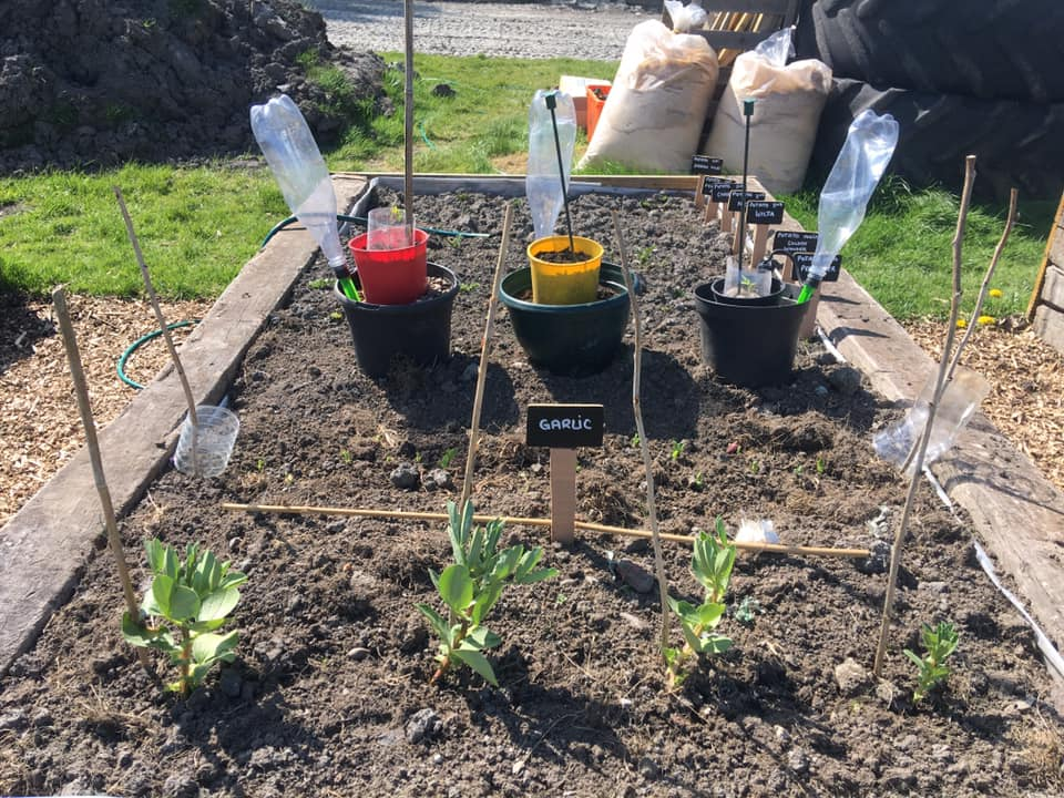 April at Shipley Woodside Community Garden - SEAG - Shipley Eco-Action Group