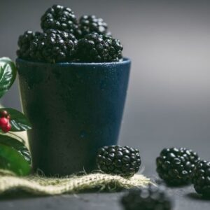 Blackberry Fairy Cakes - SEAG - Shipley Eco-Action Group