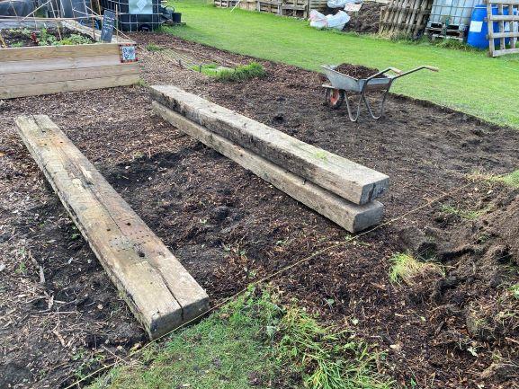 November 2020 at the Community Garden - SEAG - Shipley Eco-Action Group
