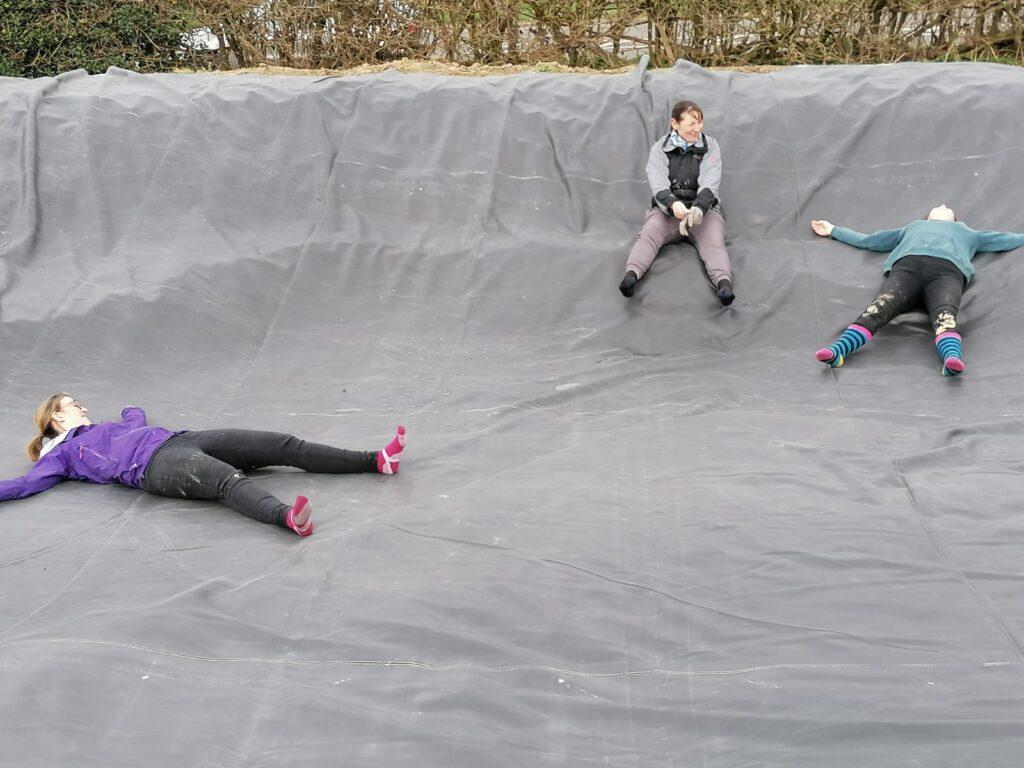 Spring 2021 at Shipley Woodside Community Garden - SEAG - Shipley Eco-Action Group