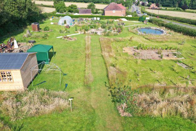 Summer at Shipley Woodside Community Garden - SEAG - Shipley Eco-Action Group