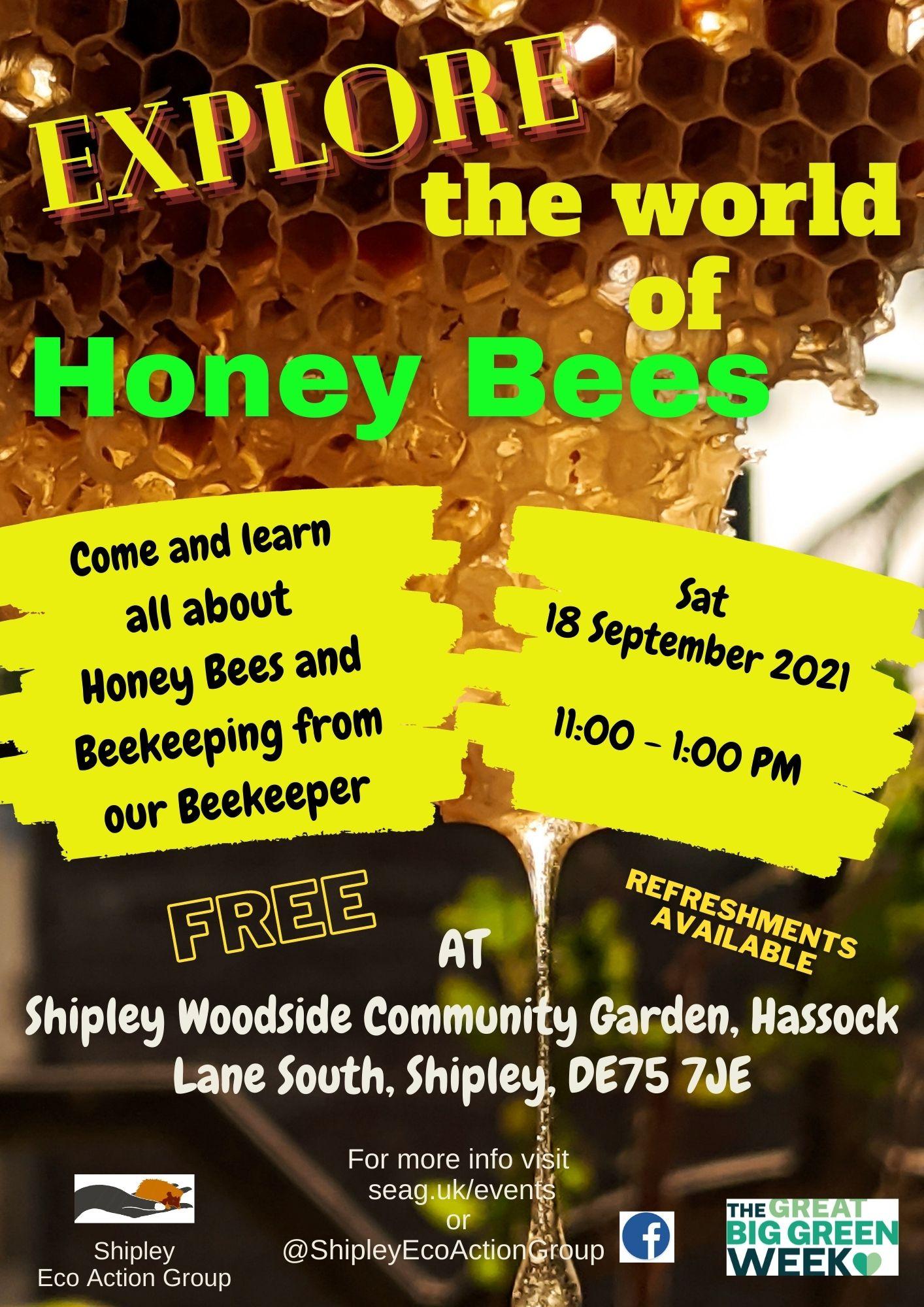 Explore the world of Honey Bees