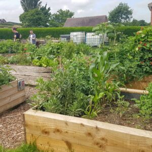 Community Garden Open and Volunteering - SEAG - Shipley Eco-Action Group