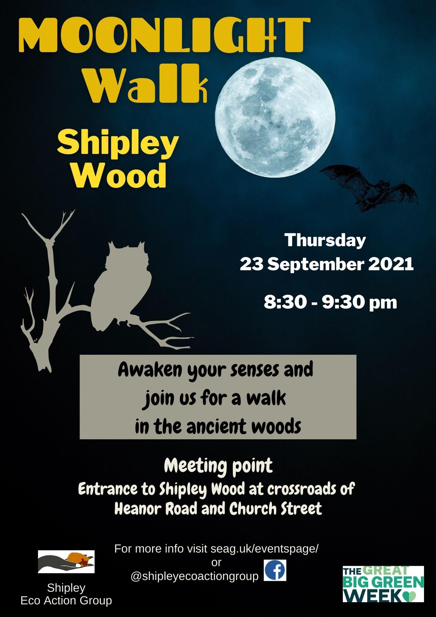 Moonlight Walk Shipley Woods
